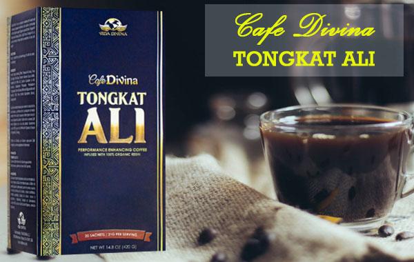 cafe tongkat ali vida divina